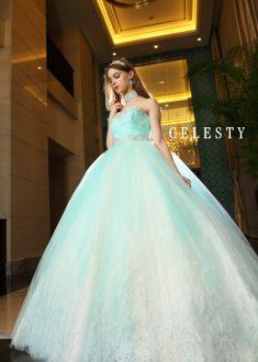 優しく淡いイエローカラーにブルーグリーンのチュールをグラデーションにデザインした新鮮な配色のドレス。エアリー感のあるチュールの透け感と中に見えるレースのバランスが絶妙。トップとウエストのビージングの輝きが美しく、華やぎを添えます。